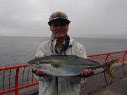 神戸市立平磯海づり公園 ウキ釣りでメジロ