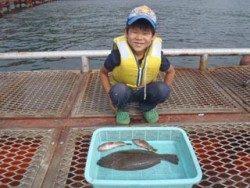 須磨海釣り公園 落とし込みでヒラメ40cmとアコウ