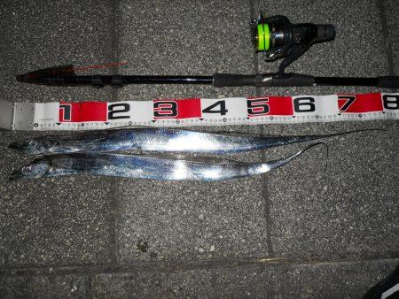 夕方~太刀魚のウキ釣り