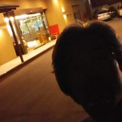 家族旅行DE淡路島観光ホテルさんに♪