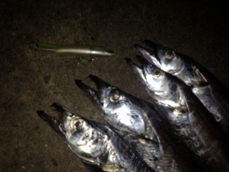 太刀魚釣行