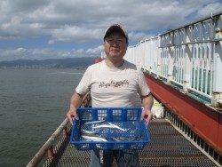 尼崎市立魚つり公園 サヨリは安定して釣れています
