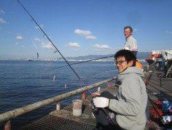 尼崎市立魚つり公園 今日も朝からイワシは好調!