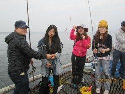 尼崎海釣り公園 サビキはイワシ中心の釣果