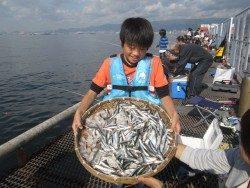 イワシ相変わらずの好釣 尼崎市立魚つり公園