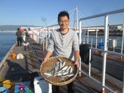 尼崎市立魚つり公園 イワシ合計5000匹