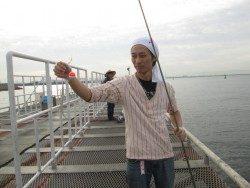 尼崎市立魚つり公園 まだまだサビキで数釣り♪