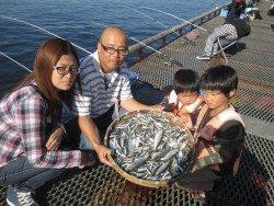 尼崎海釣り公園 イワシは今日も好調です