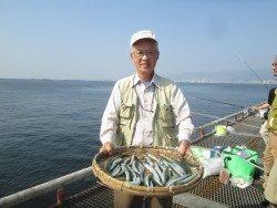 今日はサヨリが絶好釣!尼崎市立魚つり公園