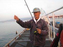 尼崎市立魚つり公園 サヨリ安定して釣れています!