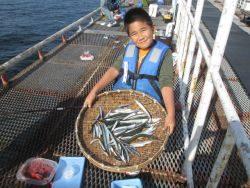尼崎海釣り公園 魚種多彩に楽しめます