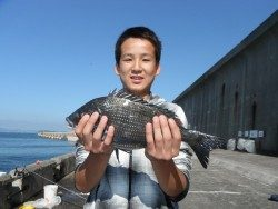 北港海釣り公園 チヌ39cmの釣果