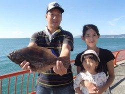 平磯海釣り公園 ウキ釣りでヒラメ36cm