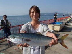 平磯海釣り公園 ルアーでハマチ43cm