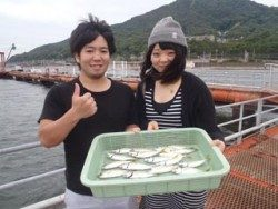 神戸市立須磨海づり公園 サビキでアジ