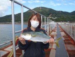 神戸市立須磨海づり公園 ノマセでハマチ♪