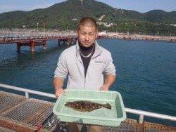 須磨海釣り公園 のませでヒラメ40cm