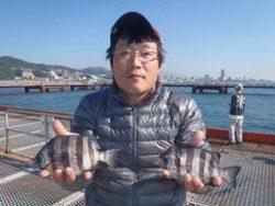 須磨海釣り公園 落とし込みでサンバソウの釣果