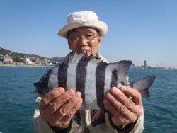 神戸市立須磨海づり公園 落とし込みでサンバソウ