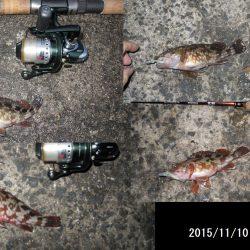 太刀魚のはずが。。。ガシリング