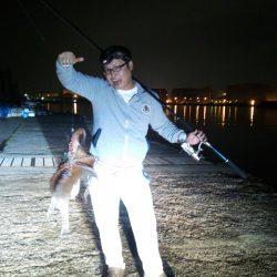 太刀魚不発も1、2キロの大タコゲット。