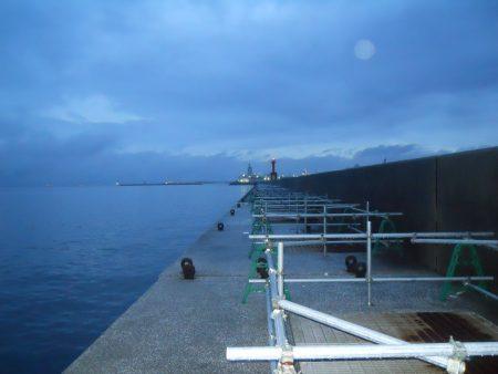 雨天、早朝~ウキ釣りでタチウオ狙い
