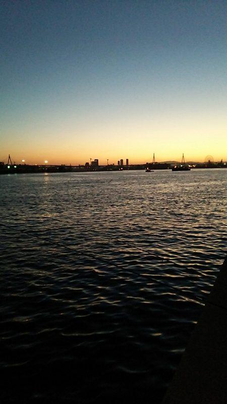 夕まずめの釣行にて‼