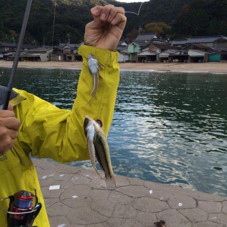 野原漁港で釣り