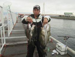 尼崎市立魚つり公園 シラサエビでセイゴなど