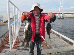 サヨリ大漁!尼崎市立魚つり公園
