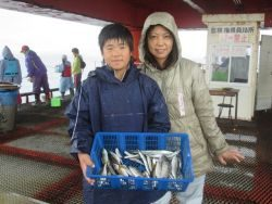 尼崎市立魚つり公園 雨でもイワシ回遊