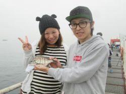 尼崎市立魚つり公園 サヨリ、イワシほか
