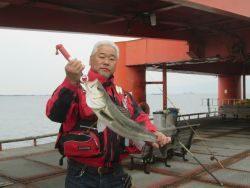 ズボ釣り立派なスズキ★尼崎市立魚つり公園