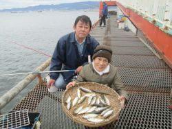 尼崎市立魚つり公園 食べ頃サイズのアジばかり♪