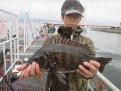 尼崎市立魚つり公園 セイゴ好調