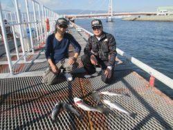 尼崎市立魚つり公園 ハネ・セイゴ高活性