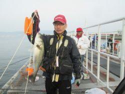 尼崎市魚つり公園 セイゴ・ハネ・チヌ・イワシなどの釣果