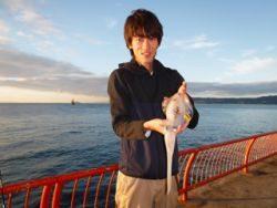神戸市立平磯海づり公園 エギングでアオリイカ