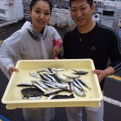 和歌山マリーナシティ海釣り公園 サビキでイワシ、グレ