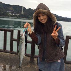 和歌山マリーナシティ海釣り公園 ミノーでサワラ68cm