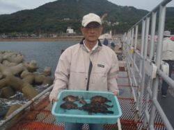 神戸市立須磨海づり公園、シラサエビでガシラ釣り