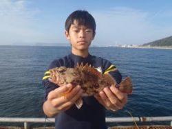 神戸市立須磨海づり公園 投げ釣りでナイスサイズのガシラ