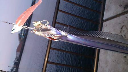 春木ベランダでワインドで太刀魚2匹ゲット