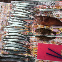 サヨリ祭り