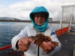 神戸市立平磯海づり公園 胴突でガシラ