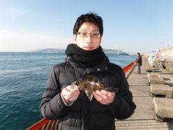 神戸市立平磯海づり公園 メバル 23㎝