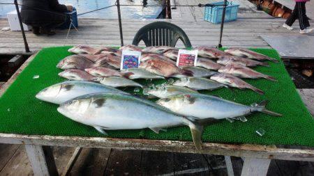 海上釣り堀紀州