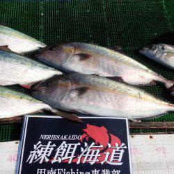 海上釣り堀マルチョウ/かなすび釣果