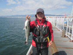 尼崎市立魚つり公園  ハネ、チヌ