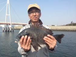 尼崎市立魚つり公園 54cmのハネ&32~38cmのチヌ